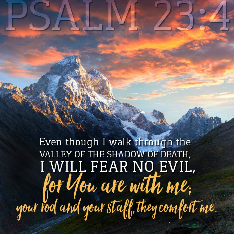 Daily Verse: Psalm 23:4