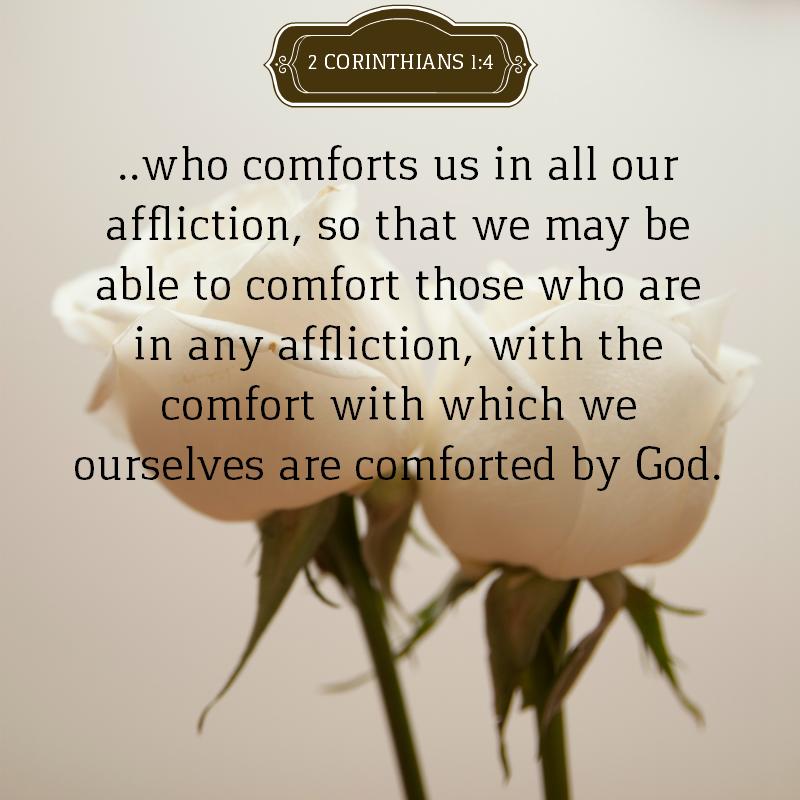 Daily Verse: 2 Corinthians 1:4
