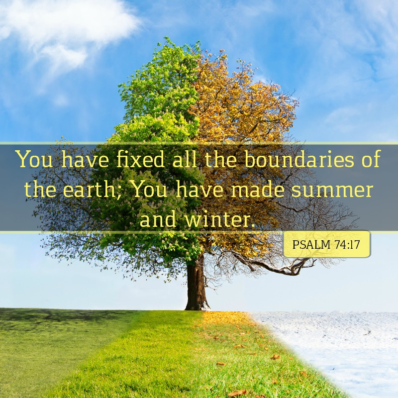 Daily Verse: Psalm 74:17