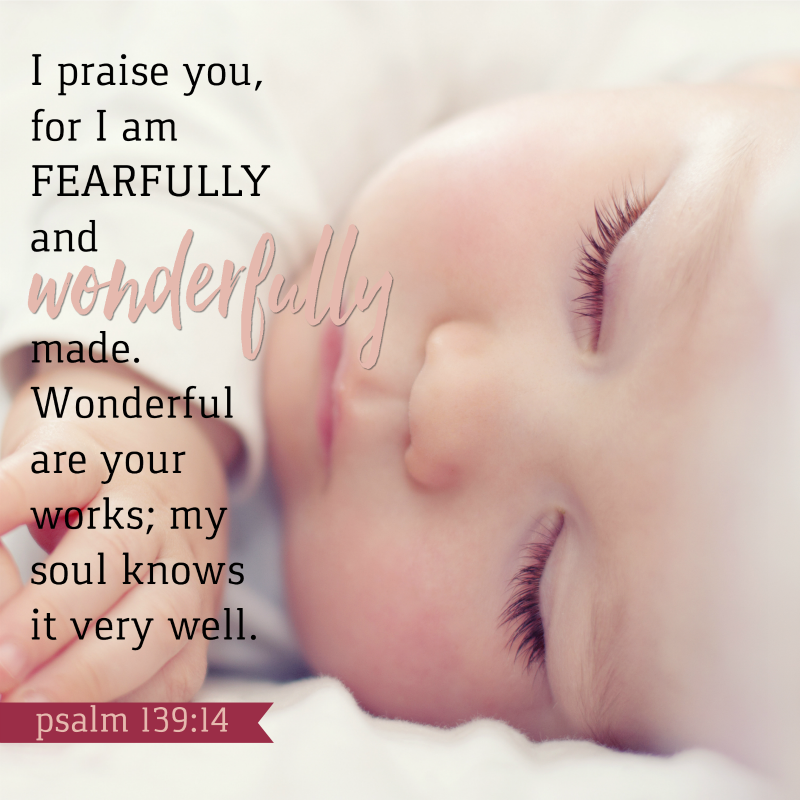 Daily Verse: Psalm 139:14
