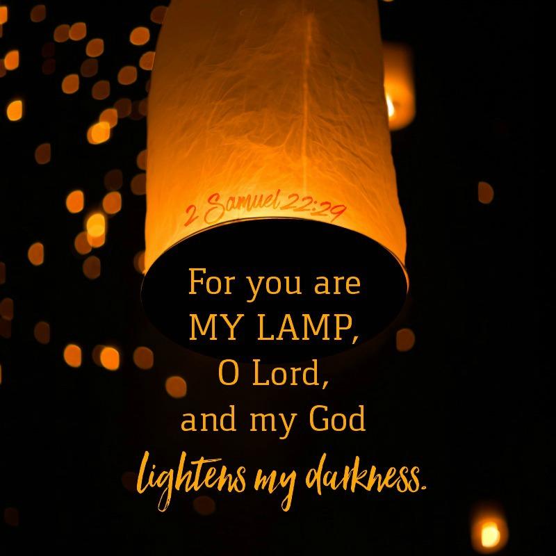 Daily Verse: 2 Samuel 22:29