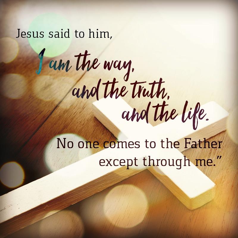 Daily Verse: John 14:6