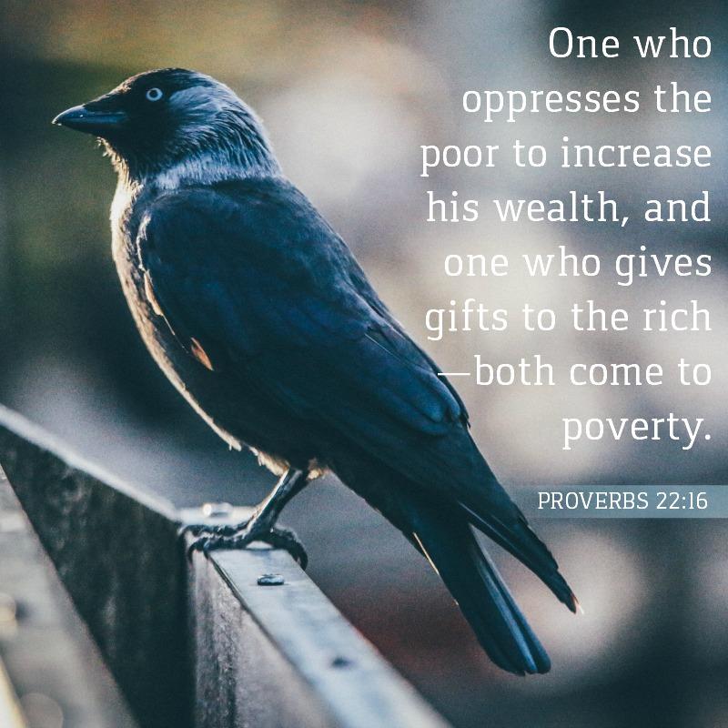 Daily Verse: Proverbs 22:16