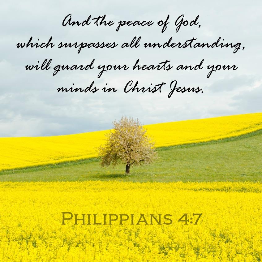 Daily Verse: Philippians 4:7
