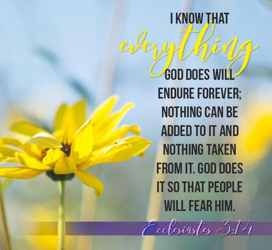 Daily Verse: Ecclesiastes 3:14