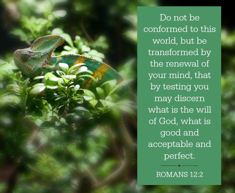 Daily Verse: Romans 12:2