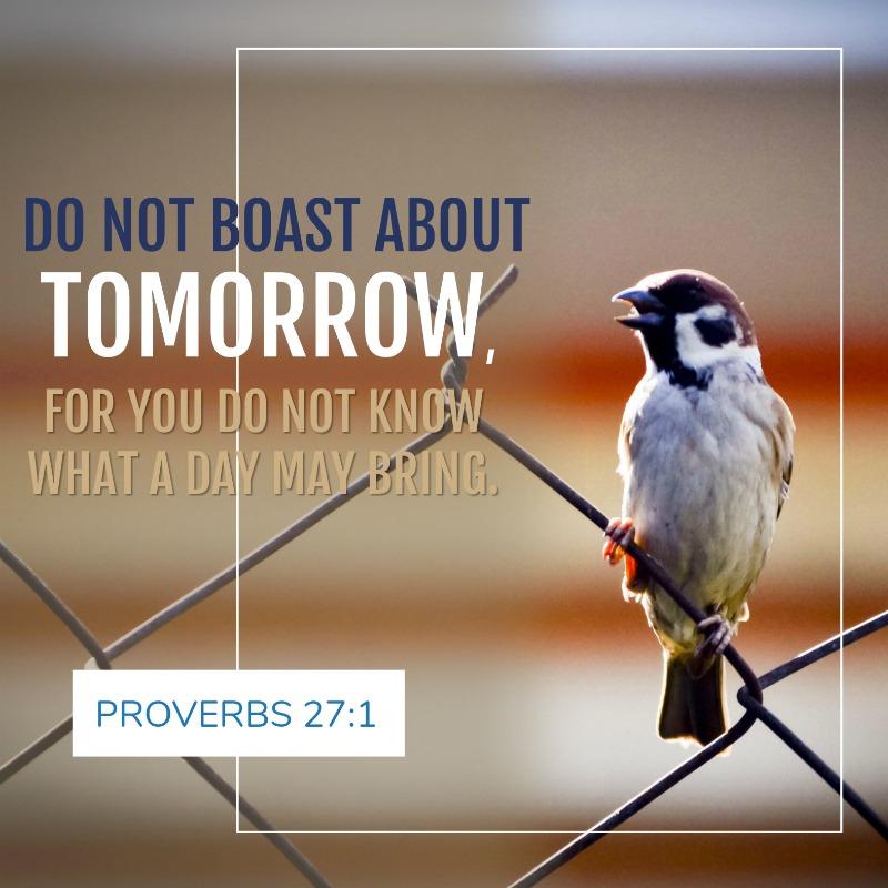 Daily Verse: Proverbs 27:1