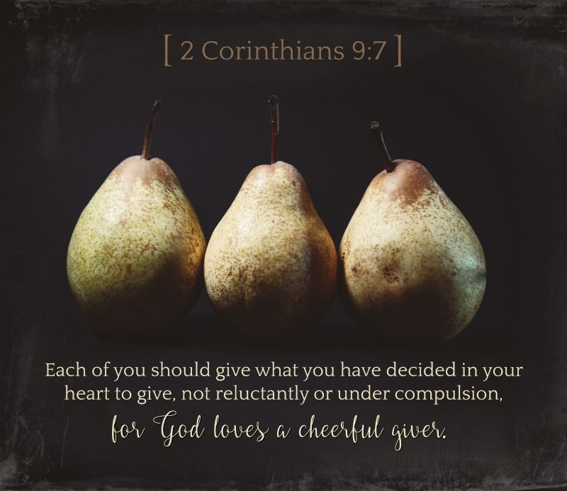 Daily Verse: 2 Corinthians 9:7