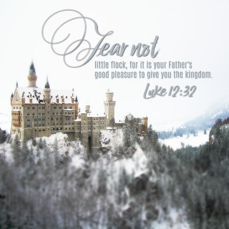 Daily Verse: Luke 12:32