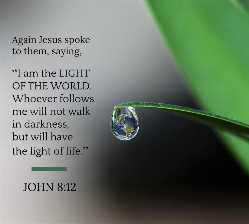 Daily Verse: John 8:12