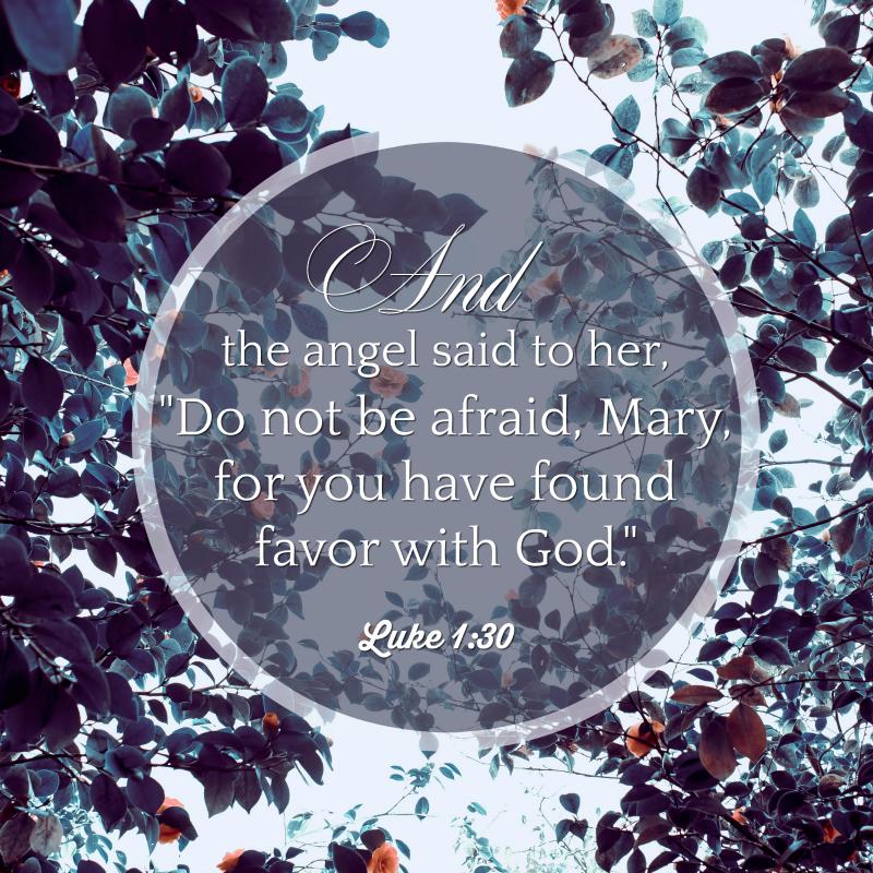 Daily Verse: Luke 1:30