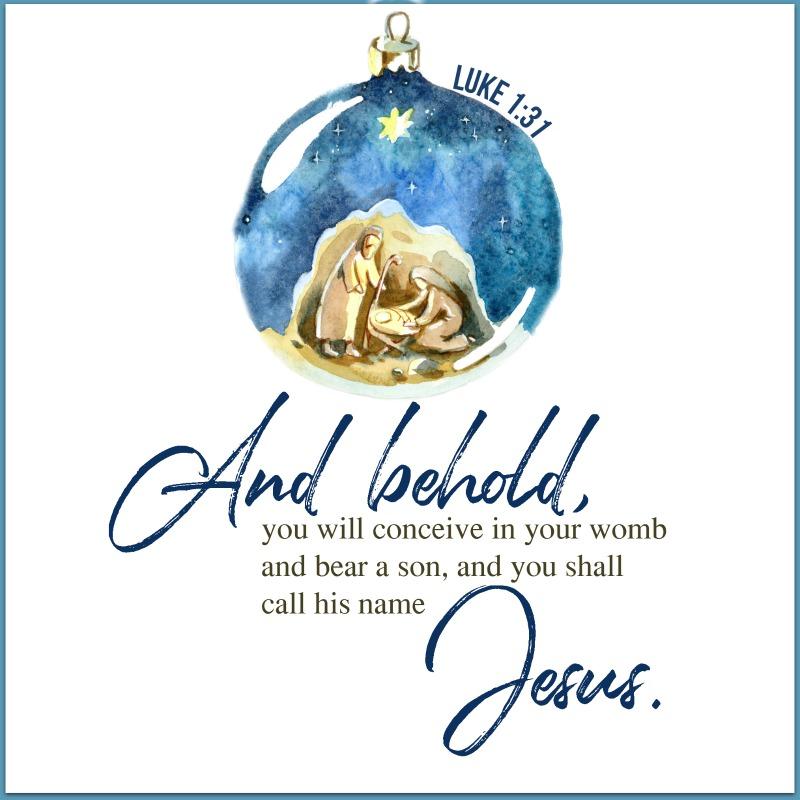 Daily Verse: Luke 1:31