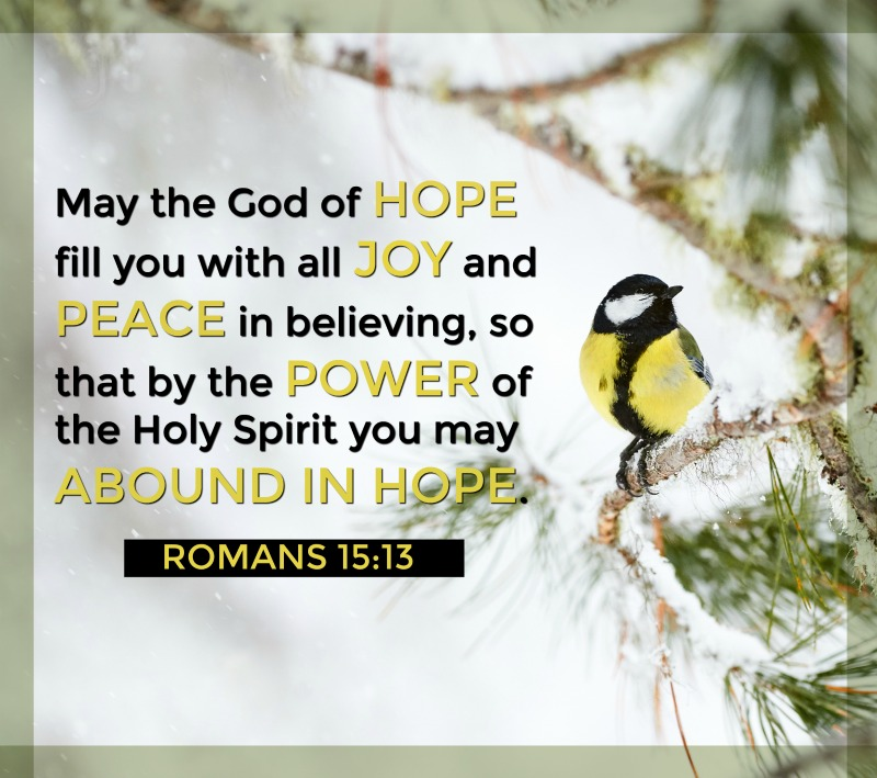 Daily Verse: Romans 15:13