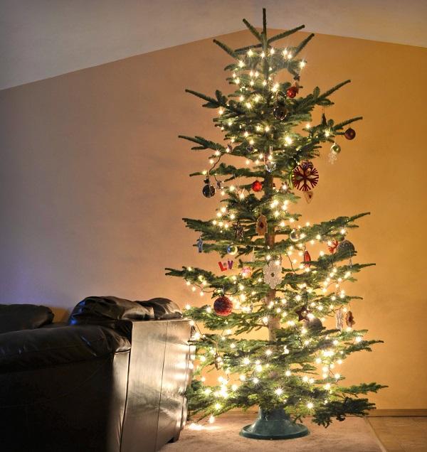 Christmas Lights - Photography Tip!
