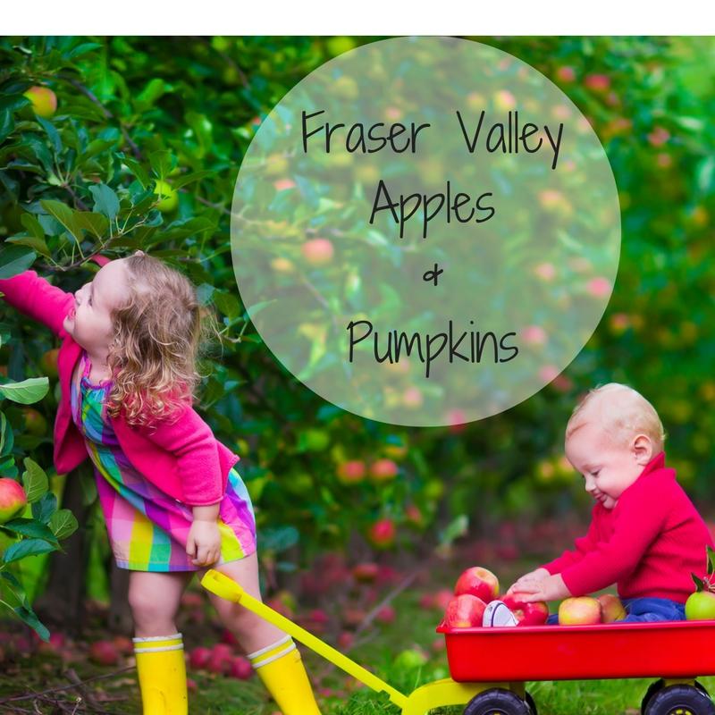 Fraser Valley Apples & Pumpkins