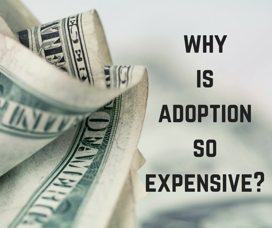 Why Is Adoption So Expensive?