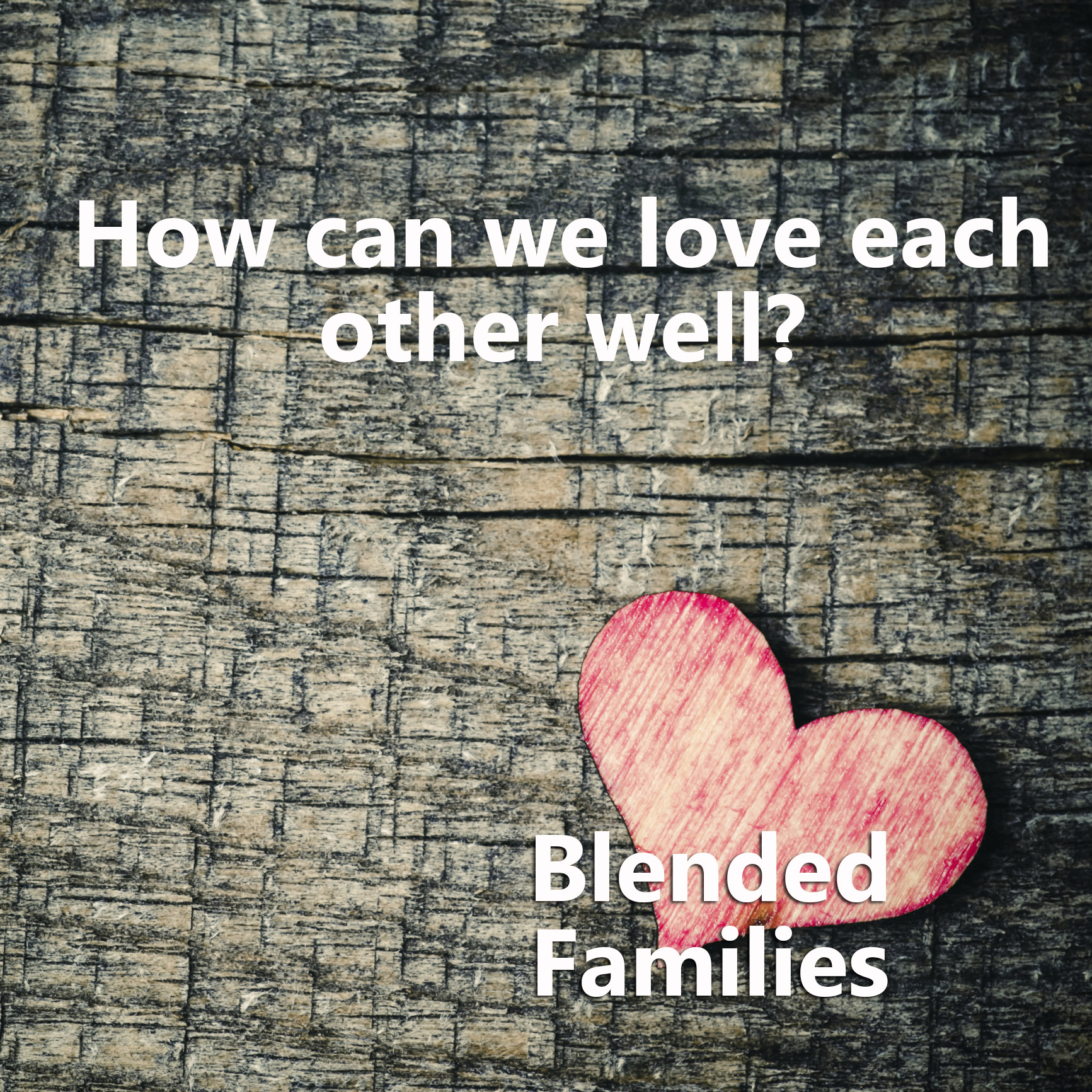 Loving the Blended Family