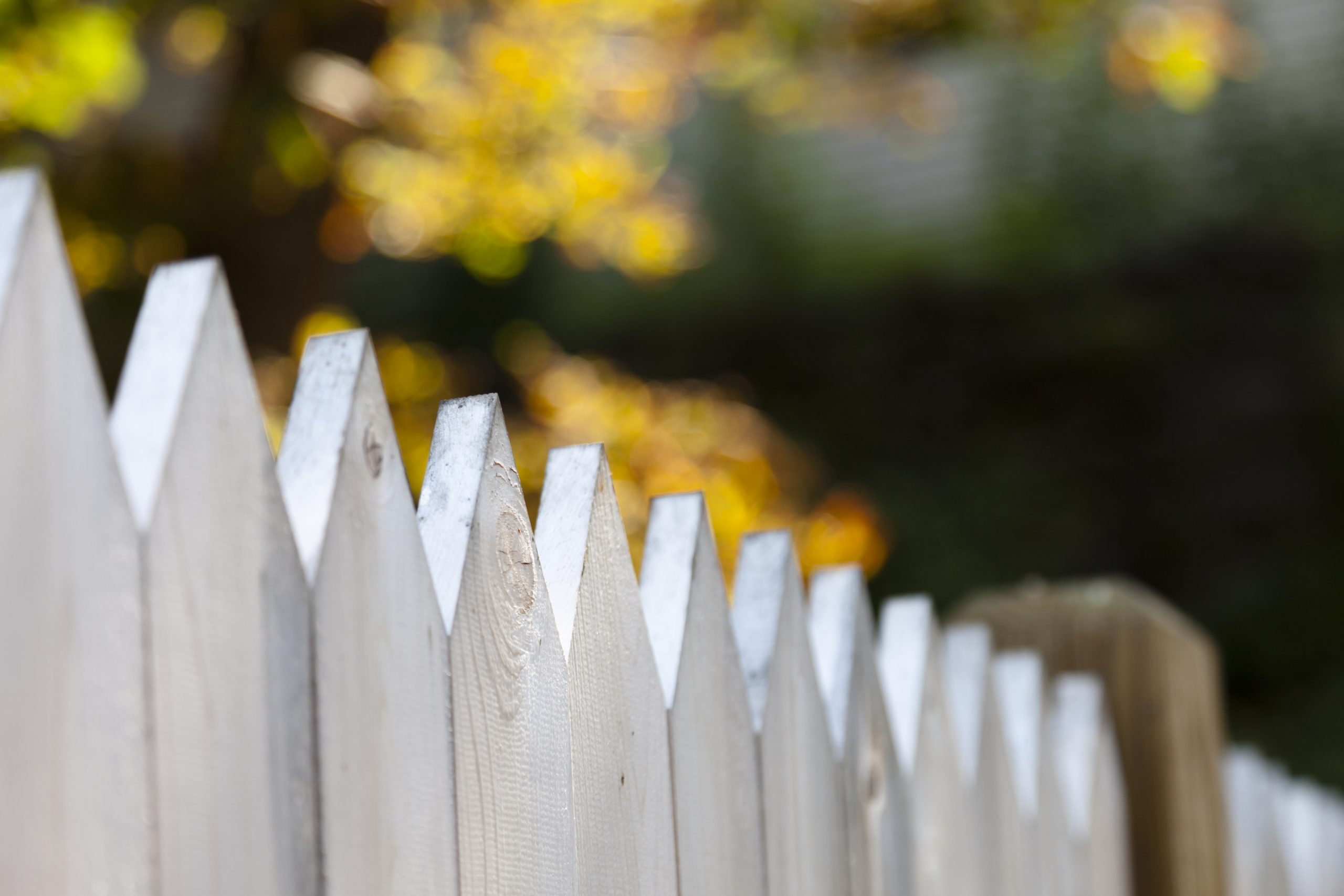 Straddling the Fence