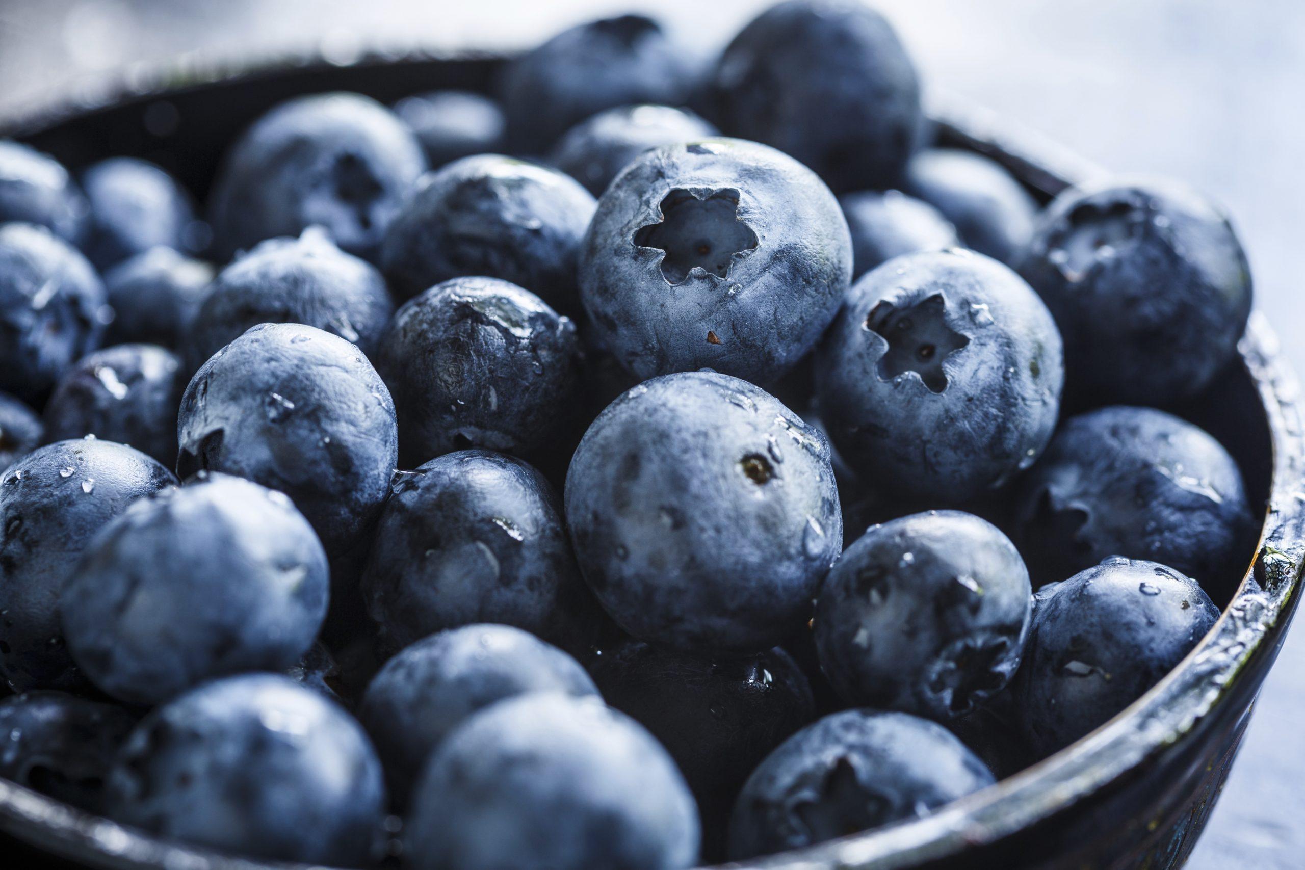 Blueberries for Ann