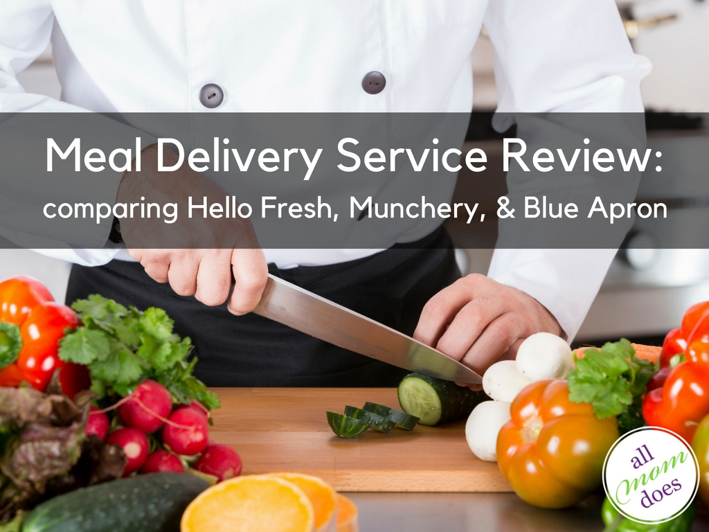 Meal Delivery Service Review