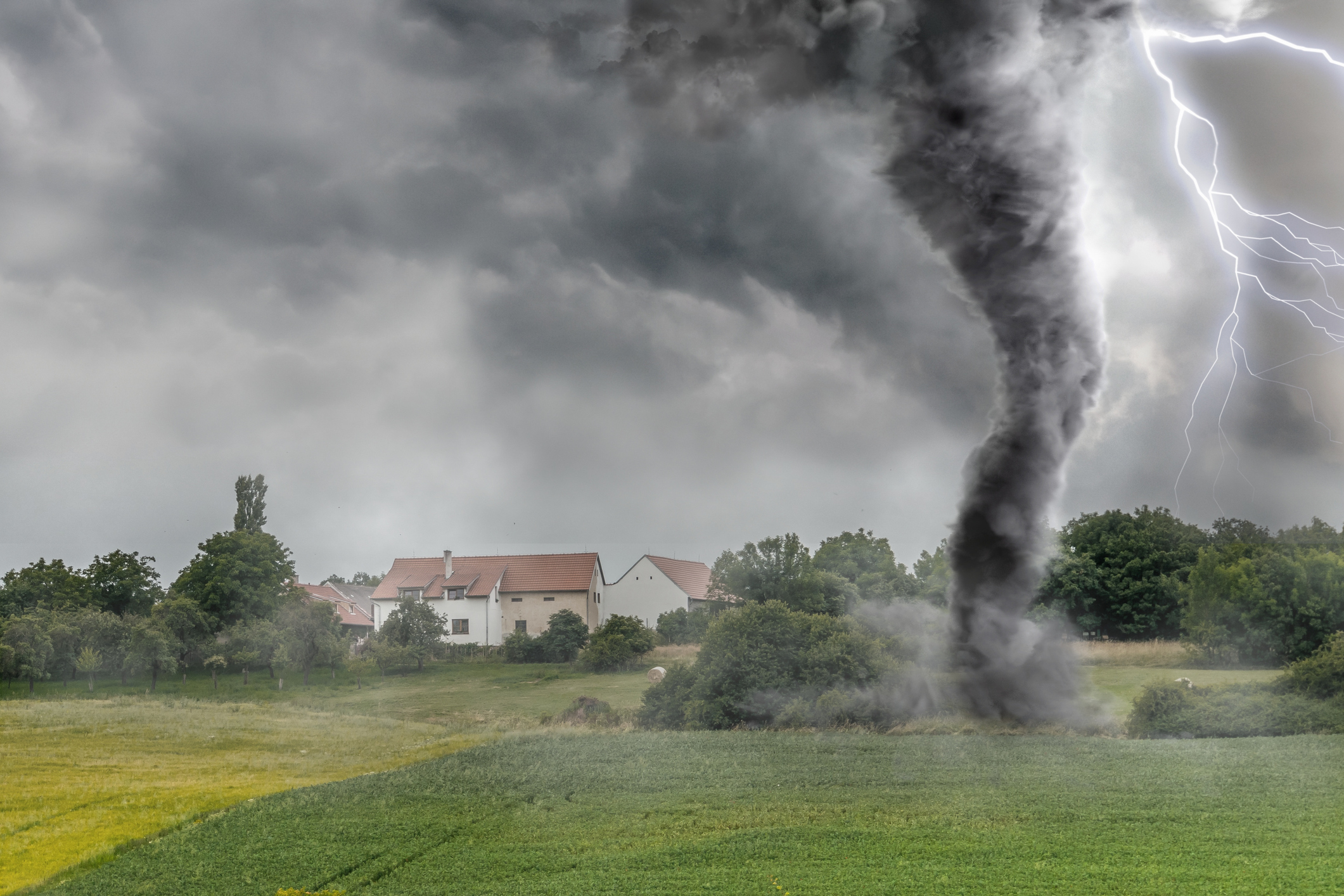 Avoid The Morning Tornado of Chaos