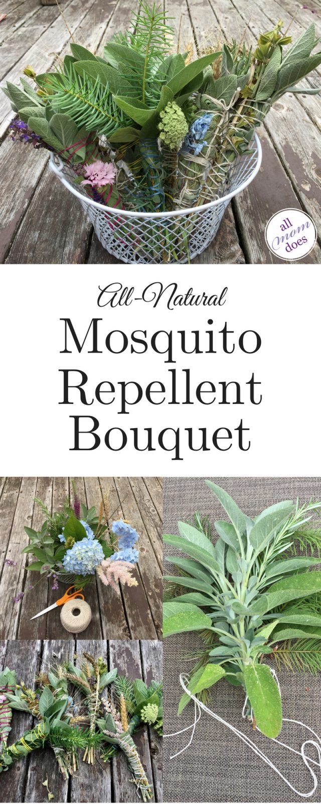 mosquito repellent - all natural, chemical free, diy