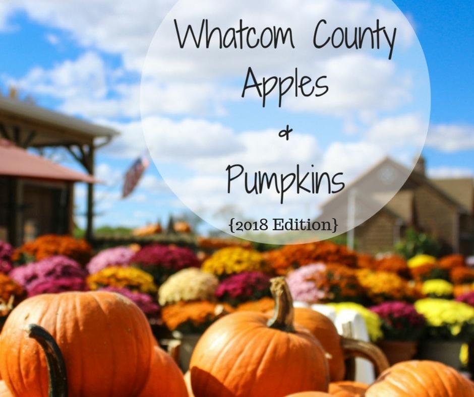 Whatcom County Apples & Pumpkins {2018 Edition}