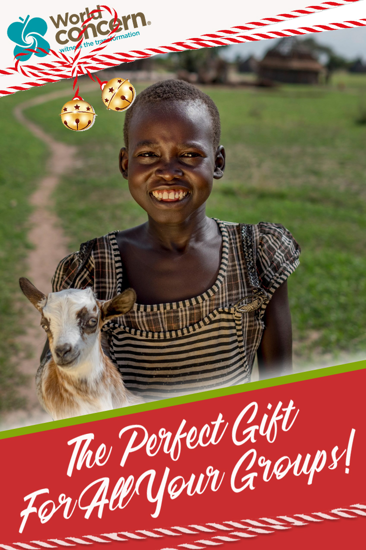 gifts, giving gifts, christmas, christmas gifts, group gifts, world concern, global gift guide