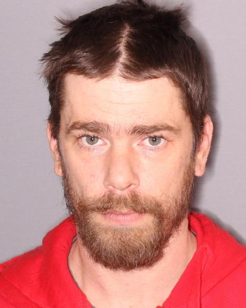 Seneca Falls Man Arrested for Larceny