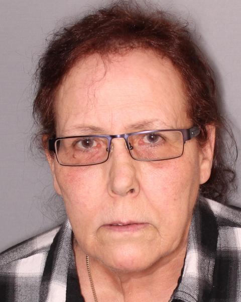 Seneca Falls Woman Accused of Petit Larceny