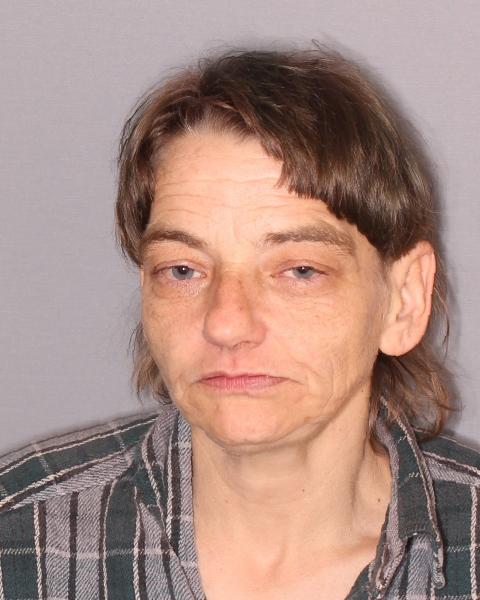 Seneca Falls Woman Arrested on Warrant