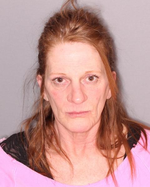 Seneca Falls Woman Accused of Grand Larceny