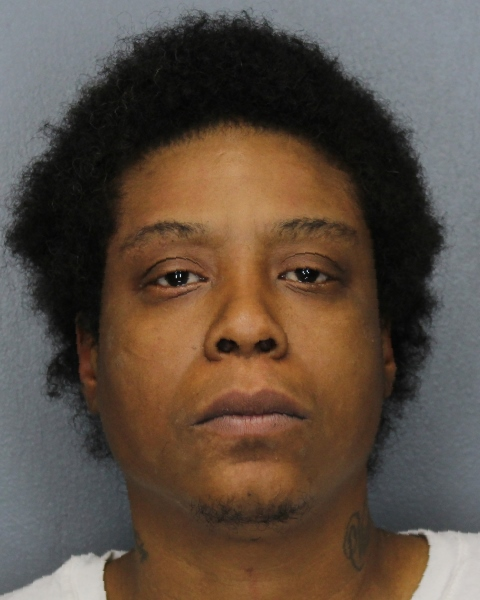 Ithaca Police Recover Heroin, Handgun from Stewart Avenue Home