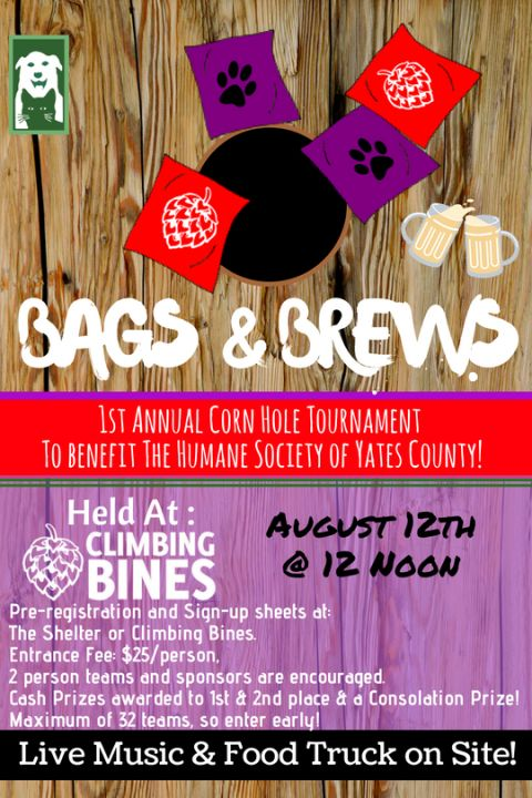 Bag and Brews Event to Benefit Yates Humane
