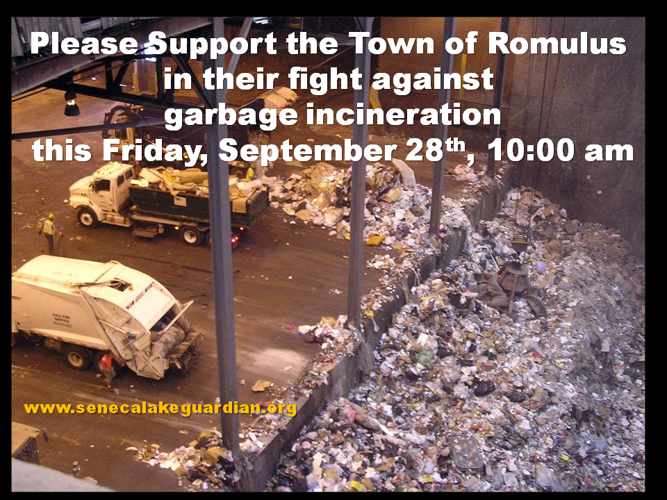 Romulus Incinerator Battle Heads to Court
