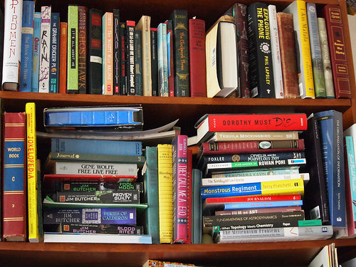 Fall Book Sale Clears $5K For Geneva Library