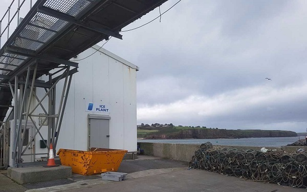 Dunmore East ice plant reopens after temporary closure due to E. coli