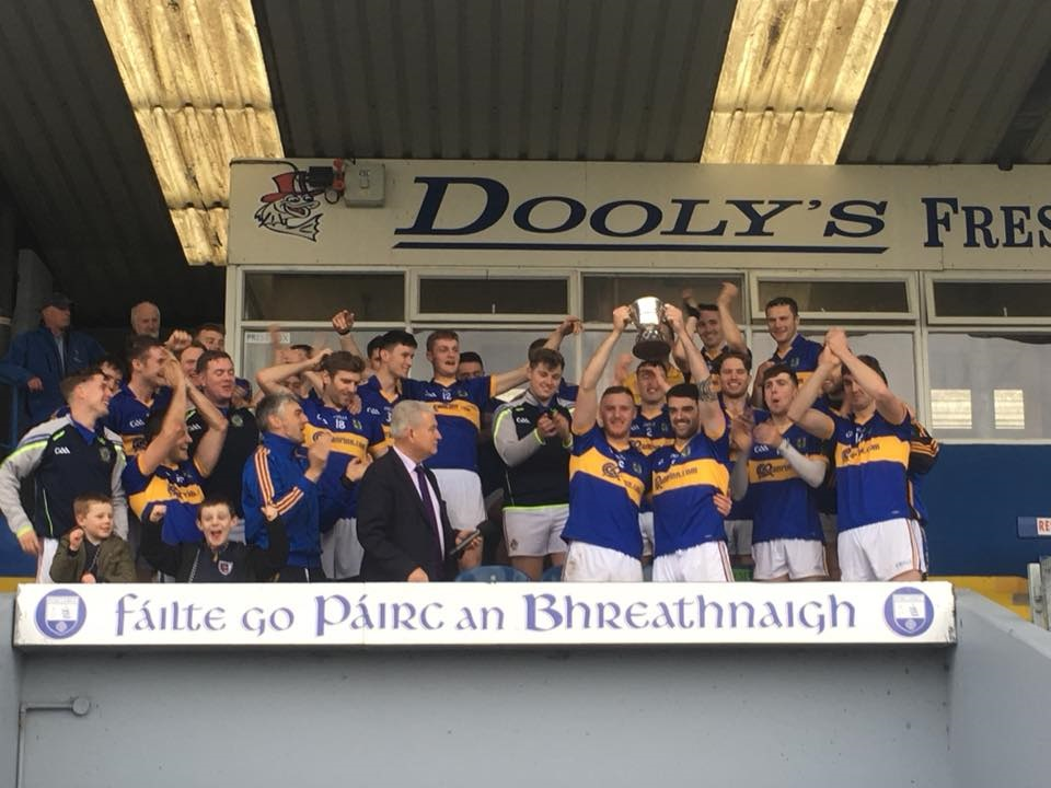 An Rinn crowned Intermediate hurling County champions