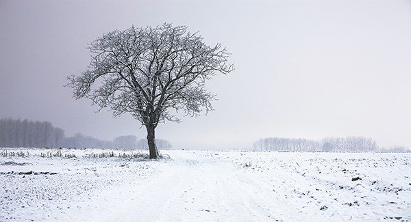 20 counties covered by snow-ice warning