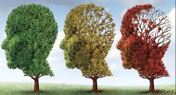 New Irish blood test to detect early stage Alzheimer's