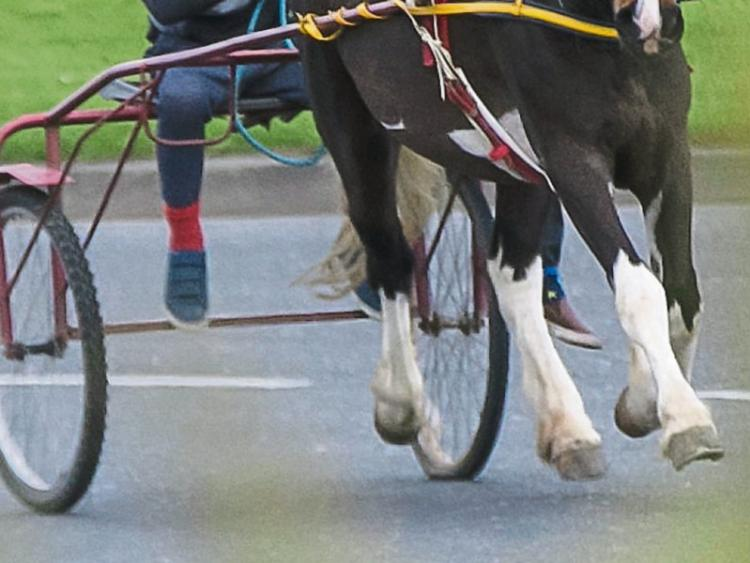 LISTEN BACK: A Waterford City and County Councillor has called for the development of a sulky racing track in the city