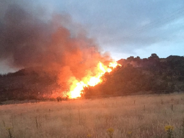 Fire at Williamstown Sports Complex 'insanely stupid'