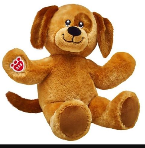 Lost -  a brown Build a Bear Teddy