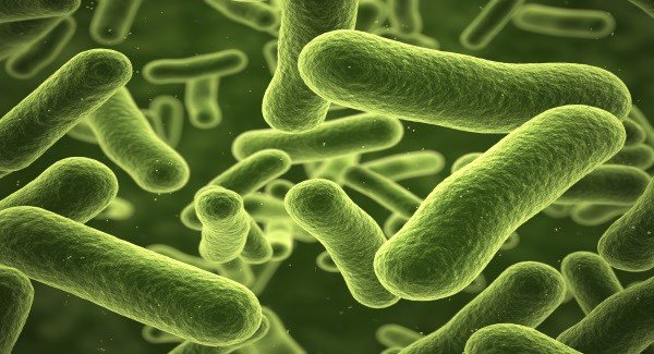 5,000 patients exposed to superbug