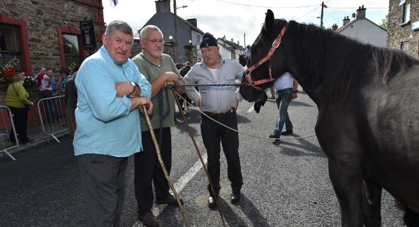 Traffic restrictions in place for Tallow Horse Fair.