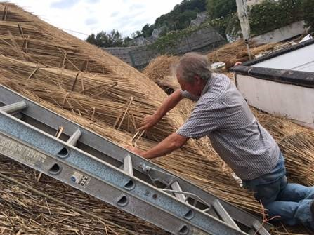 Members of the public will be able learn about traditional thatching in Waterford this weekend.