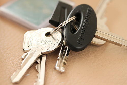 Lost: car and house keys