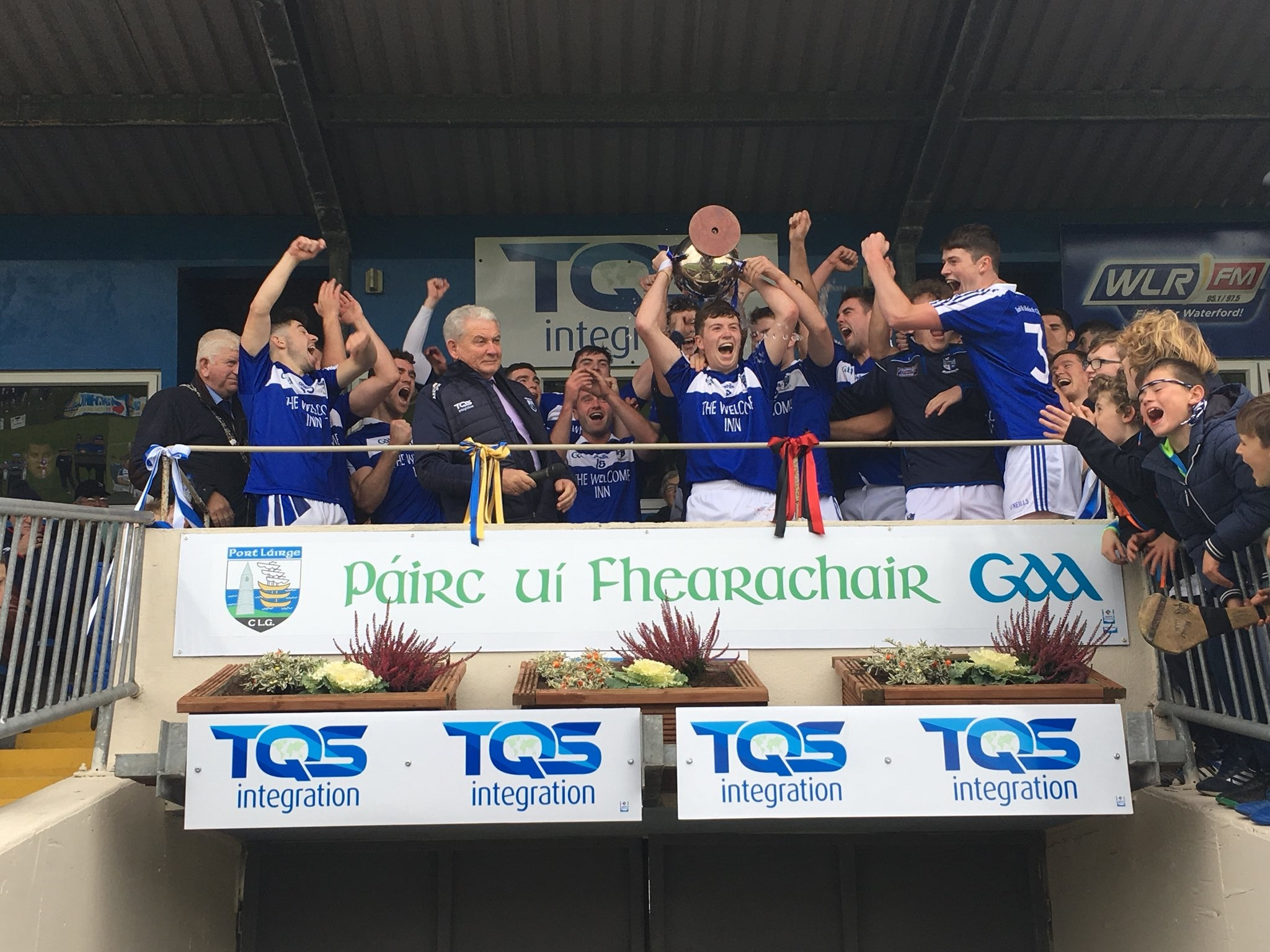 Ballinameela crowned County Junior 'A' Hurling Champions