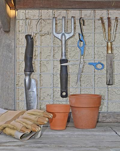 Waterford Regional Gardening Club Meeting -  Thursday November 15th