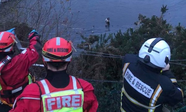 Waterford firefighters rescue dog from reservoir
